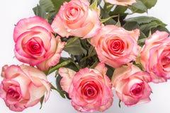 Boeket van roze bloemen op witte achtergrond Stock Afbeelding