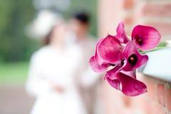 Boeket van roze callas royalty-vrije stock afbeelding