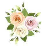 Boeket van roze en oranje rozen Vector illustratie Royalty-vrije Stock Afbeeldingen