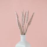 Boeket van roze tarweaartjes in witte vaas stock foto