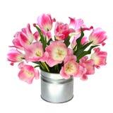 Boeket van roze tulpen Stock Foto's