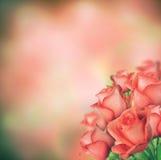 Boeket van rozen Stock Foto