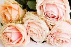 Boeket van tedere rozen Royalty-vrije Stock Foto
