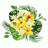 Boeket van tropische bloemen Royalty-vrije Stock Foto's
