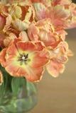 Boeket van Tulpen stock afbeelding