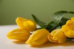 Boeket van tulpen Royalty-vrije Stock Afbeeldingen