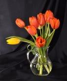 Boeket van tulpen in een glasvaas Stock Afbeelding