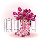 Boeket van tulpen in een mooie stiprubberlaarzen Vector illustratie enkel Geregend Stock Afbeelding
