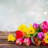 Boeket van tulpen en gele narcissen stock afbeelding