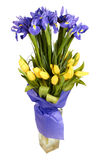 Boeket van tulpen en irissen Royalty-vrije Stock Foto