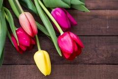 Boeket van tulpen op donkere bruine raad royalty-vrije stock afbeelding