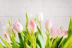 Boeket van tulpen op een lichte achtergrond Royalty-vrije Stock Afbeeldingen