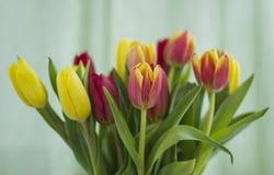 Boeket van tulpen op een lichte achtergrond stock foto