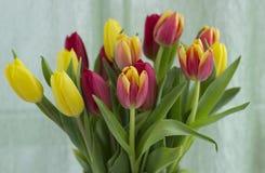 Boeket van tulpen op een lichte achtergrond stock afbeeldingen