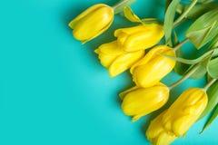 Boeket van tulpen op kleurenachtergrond Royalty-vrije Stock Fotografie