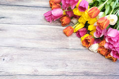 Boeket van vele roze tulpen gele rood en wit en roze Stock Afbeelding