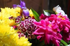 Boeket van verschillende bloemen Royalty-vrije Stock Afbeelding