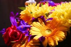 Boeket van verschillende bloemen Royalty-vrije Stock Afbeeldingen