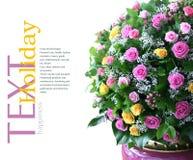 Boeket van verse bloemen Royalty-vrije Stock Fotografie