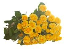 Boeket van verse rozen Stock Foto's