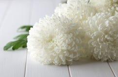 Boeket van verse witte chrysanten op een witte houten achtergrond Stock Foto's
