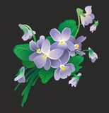 Boeket van viooltjes Royalty-vrije Stock Afbeelding