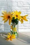 Boeket van wilde bloemen royalty-vrije stock afbeelding