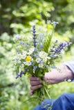 Boeket van wilde bloemen ter beschikking op een groene achtergrond Royalty-vrije Stock Foto