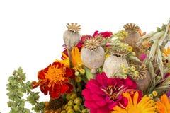 Boeket van wilde die bloemen op de witte achtergrond worden geïsoleerd Stock Afbeeldingen