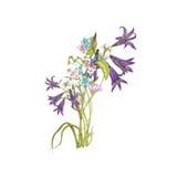 Boeket van wildflowers Royalty-vrije Stock Foto's