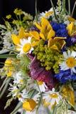 Boeket van wildflowers Royalty-vrije Stock Foto