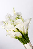 Boeket van witte calla lelies en eustoma op witte `-achtergrond Stock Afbeeldingen