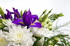 Boeket van witte chrysanten en irissen Stock Foto's