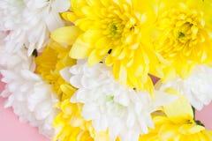 Boeket van witte en gele chrysanten op bleek - roze achtergrond Stock Afbeeldingen