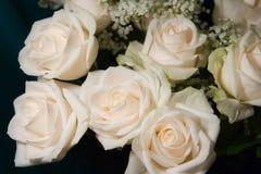 Boeket van witte rozen royalty-vrije stock afbeelding