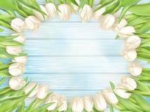 Boeket van witte tulpen Eps 10 Stock Afbeeldingen