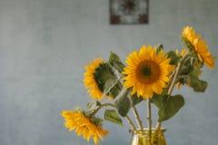 Boeket van zonnebloemen met blauwe geweven muurachtergrond Royalty-vrije Stock Foto