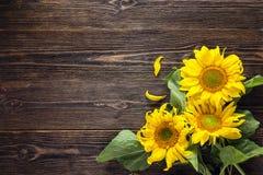 Boeket van zonnebloemen op een donkere houten achtergrond De ruimte van het exemplaar Royalty-vrije Stock Afbeeldingen