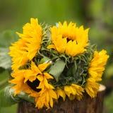 Boeket van zonnebloemen op een strump vierkante foto stock foto