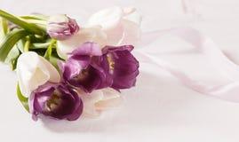 Boeket, witte en purpere tulpen Stock Fotografie