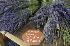 Boeketten van lavendel Royalty-vrije Stock Fotografie