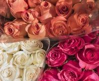 Boeketten van rozen Royalty-vrije Stock Afbeeldingen