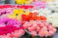Boeketten van verschillende verscheidenheden van rozen bij een straatmarkt Verkopende kleurrijke bloemen Royalty-vrije Stock Fotografie