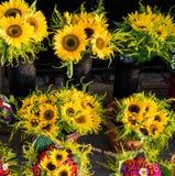 Boeketten van verse zonnebloemen royalty-vrije stock fotografie