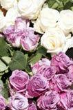 Boeketten van witte en roze rozen Stock Afbeeldingen