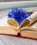 Boekpagina's in een hart en een bloem van boeket worden gevouwen dat cornflowe Royalty-vrije Stock Fotografie