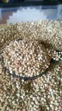 boekweit goede gezonde gluten-vrije witte zaden Royalty-vrije Stock Foto