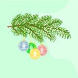 Bożenarodzeniowa dekoraci gałąź z Bożenarodzeniowymi piłkami z ornamentami wektorowymi Fotografia Stock