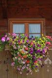 Boerderijvenster met kleurrijke bloemdoos Stock Fotografie