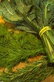 Boerenkool, dille en rozemarijn royalty-vrije stock foto